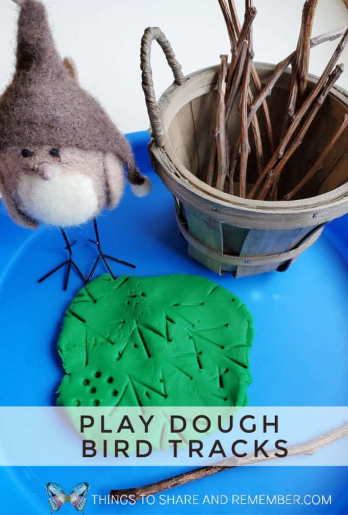 Play Dough Bird Tracks Birds & Eggs theme