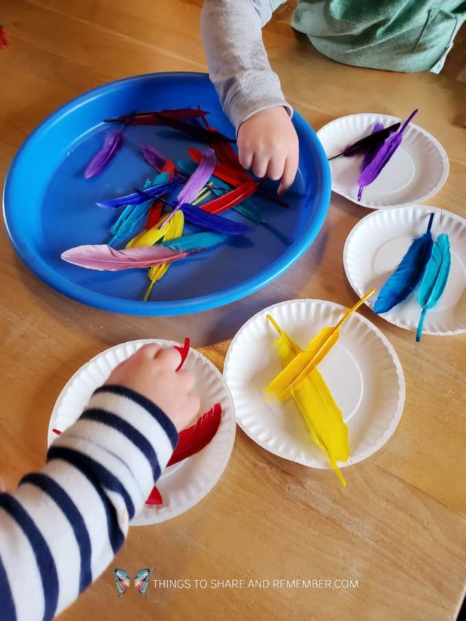 sorting feathers by color in preschool