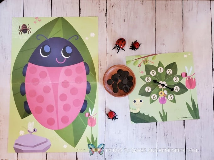 Ladybug Counting Game from Experience Preschool Bugs & Crawly Things theme