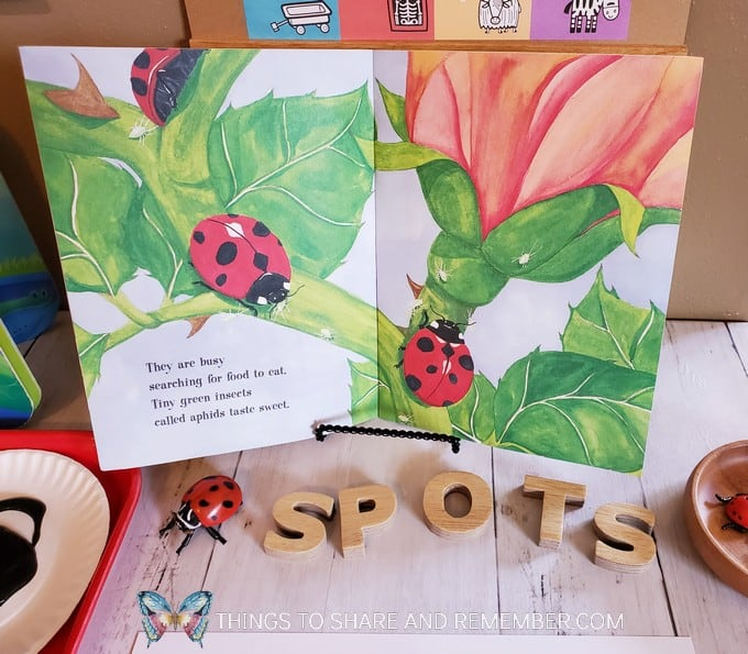 painting ladybug spots activity table for preschoolers