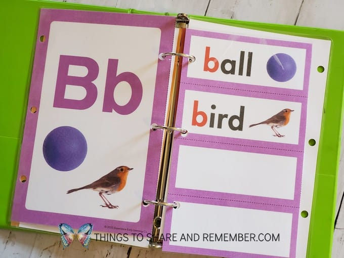 Letter B alphabet card and word wall cards from Experience Curriculum