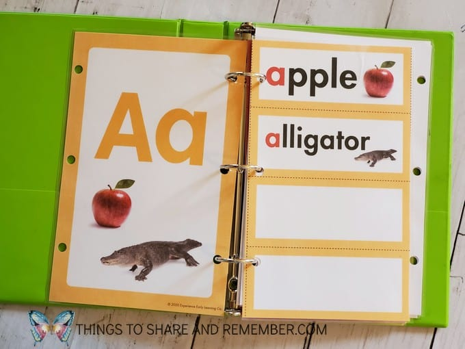Letter A alphabet card and word wall cards from Experience Curriculum