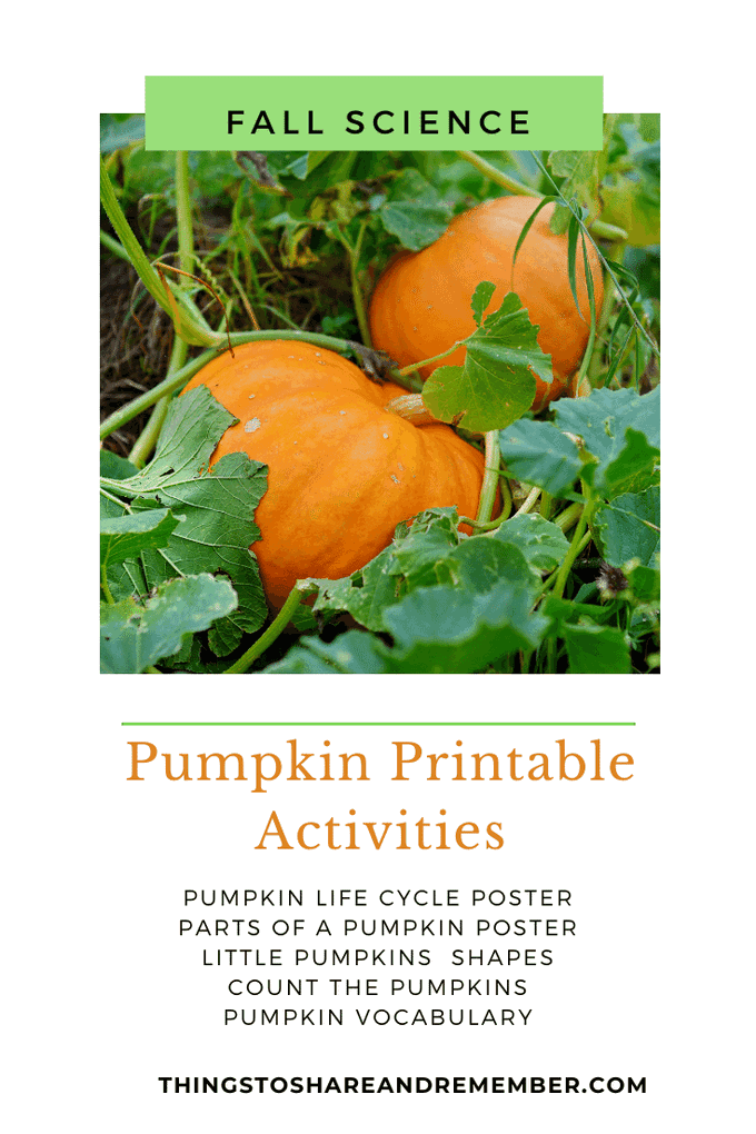 pumpkin printable activities for preschoolers