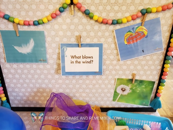 what blows in the wind display