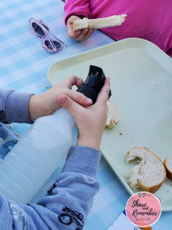 child using spray bottle to spray bread
