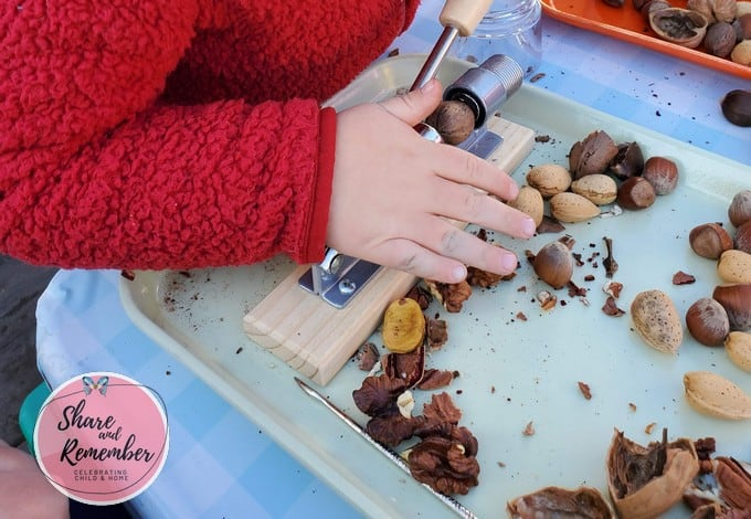 Using tools to crack nuts in preschool