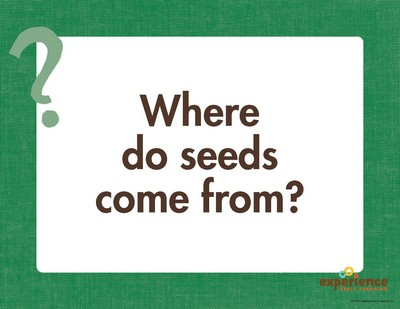 Where do seeds come from? Weather & Seasons Preschool Theme from Experience Preschool