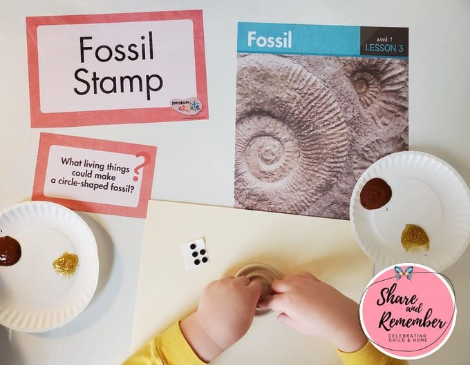 Fossil Stamp Art
