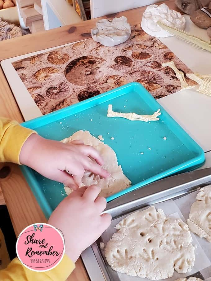making fossils with salt dough