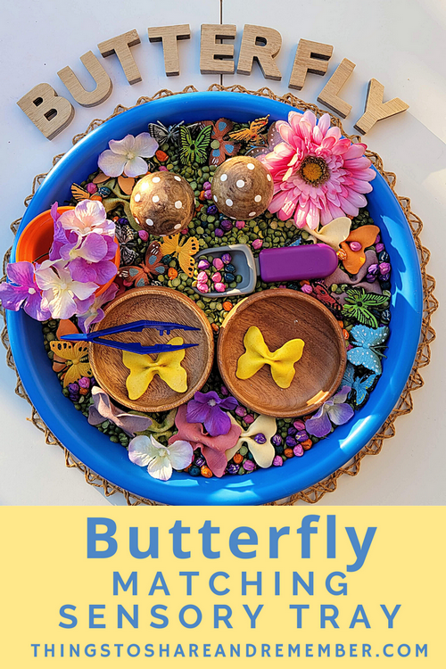 Butterfly Matching Sensory Tray for a spring preschool gardening theme.