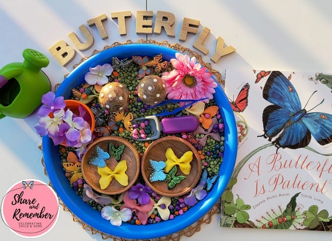 """Butterfly Matching Sensory Tray with book and the word """"butterfly"""" with wood letters"""