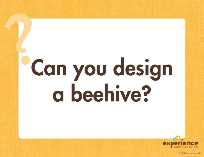 Can you design a beehive? STEAM Station from Experience Curriculum