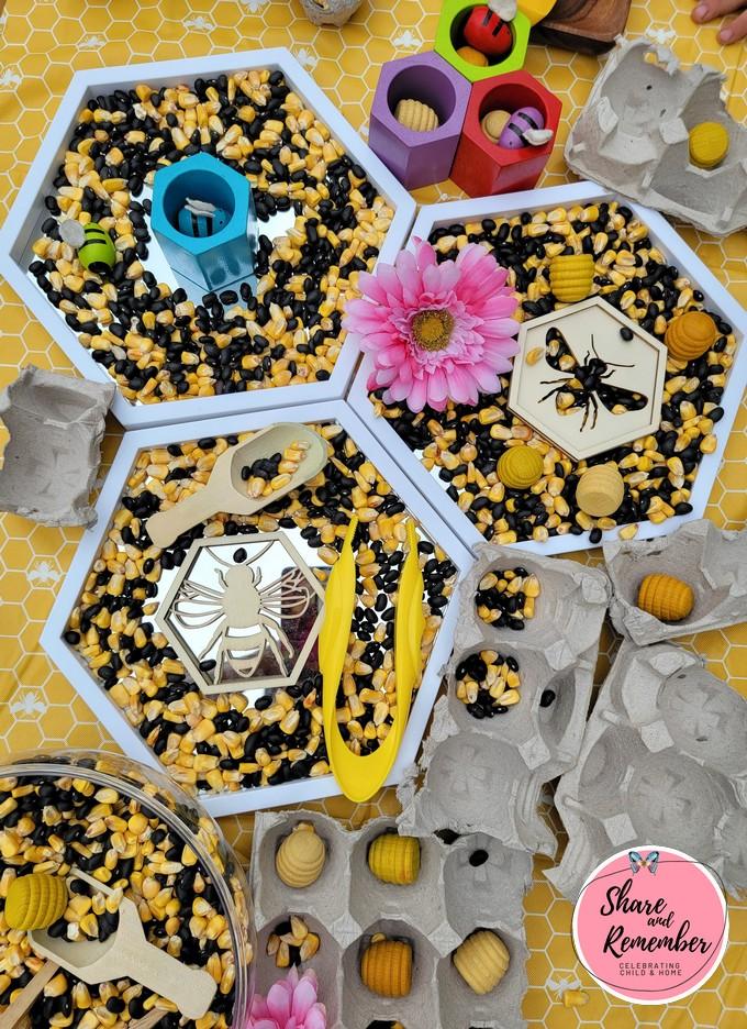 Design a Beehive Sensory & STEAM