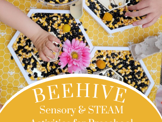 Beehive Sensory & STEAM