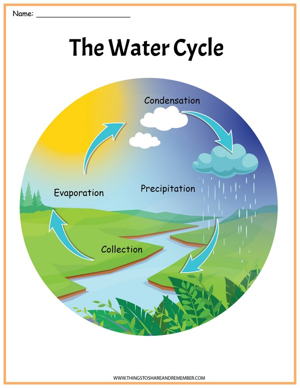 The Water Cycle Poster Printable