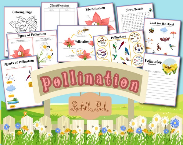 All About Pollination Printables