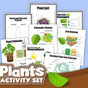 Plants Activity Set