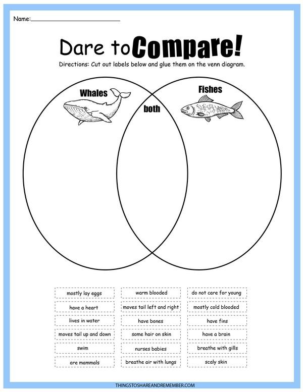 Dare to Compare Whale vs Fish Science Printable
