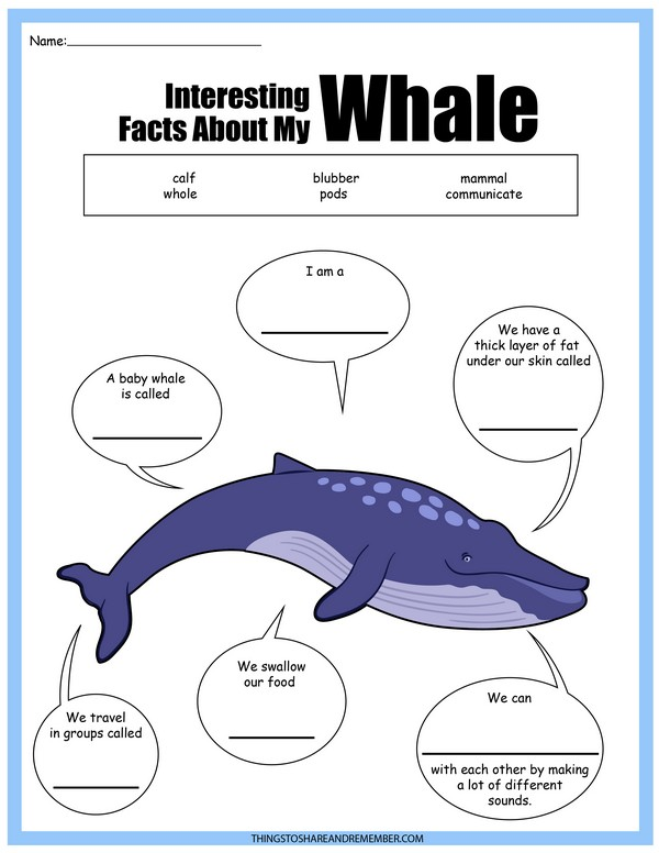 Facts About Whales Printable
